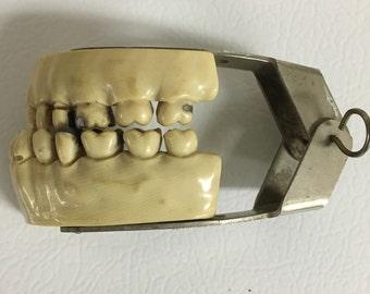 Dental practice teeth 1940s