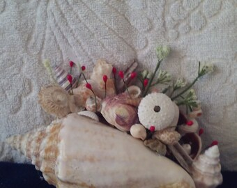 Seashell center piece