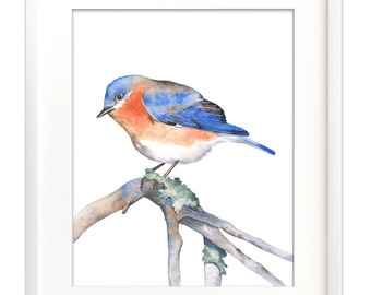 Bluebird watercolor, bluebird print, bluebird digital print, Bluebird printable art, digital download bluebird, bird downloadable