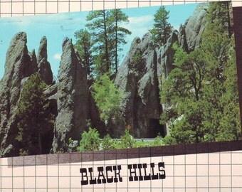 Vintage Black Hills, South Dakota. Stamped Post Card. 1992