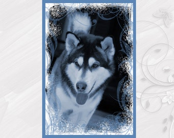 "Post card greeting card ""Alaskan Malamute"" dog - [# GK. 2012.023]"