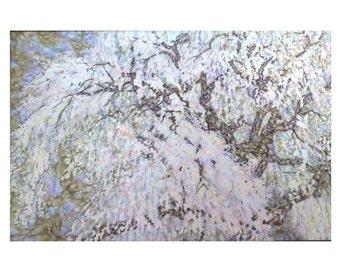 Batik Painting on Silk 'Spring blossom'