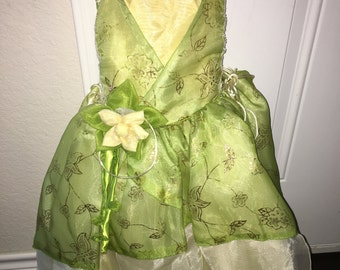 Disney princess and the frog dress costume 2t
