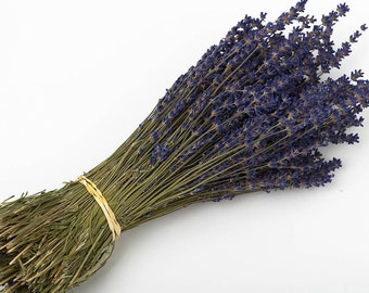 A Bunch of Dried English Lavender