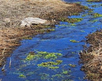 Meandering Stream - landscape photograph - creek water wyoming western prairie
