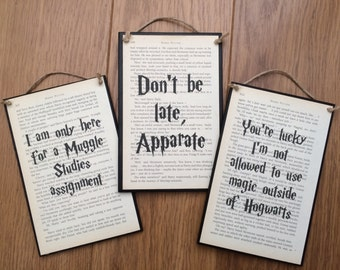 Harry Potter inspired wall plaque