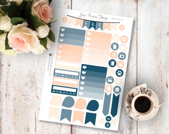 Planner Stickers for the vertical Erin Condren Life Planner - Dream Kit Functional Icons Sheet