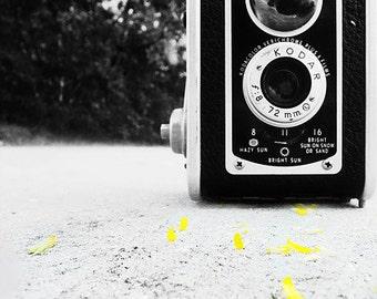 Vintage Camera Photography- still life- wall art- photography print