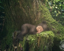 digital background for composites of newborns of mossy tree stump