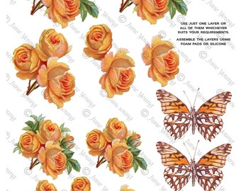 Deep Peach Roses & Butterflies