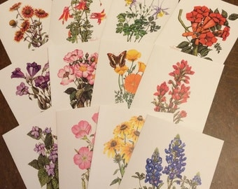 Wildflower Note Cards