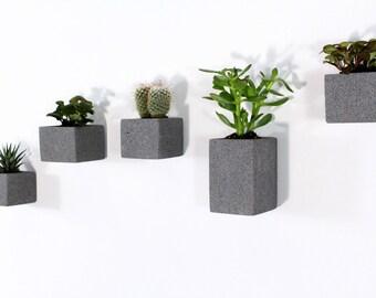 Aera Wall Planters (set of 5)