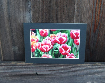 READY TO SHIP: 5x7 Matted Print