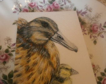 Mother Duck and a Fluffy Duckling aceo original watercolour painting