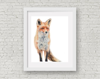 "Fox ""Contemplation"" Limited Edition A4 Giclee Print"