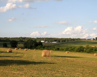 Fields in Southern, Indiana