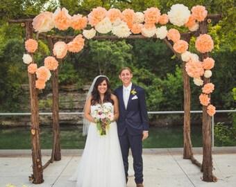 Tissue Paper Backdrop Mexican Paper Flowers Garland Tissue Pom Poms - Set of 10 - Nursery Decor Baby Shower Wedding Reception
