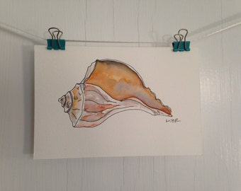 Original Seashell Watercolor and Ink Painting, Small Beach Shell Painting, Whelk Conch Watercolor, Small Postcard Painting, Wall Decor, 4 x