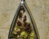 Terrarium Pendant - Large Silver Triangle