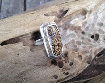 Fossilized Dinosaur Bone and Sterling Silver Ring
