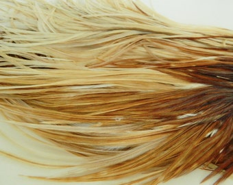 """8 Natural Light Ginger Variant, SKINNY Hair Feather Extensions, 10"""" to 12"""" Long"""