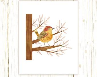 Palm Warbler Print -- bird art --bird art 52 birds stephanie fizer coleman illustration