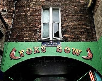 Fox's Bow, LIMERICK, Ireland Photography, Luimneach, Irish City, Munster, Quaint Town, City Maze, Fox Art, Irish Art, Cool European Street