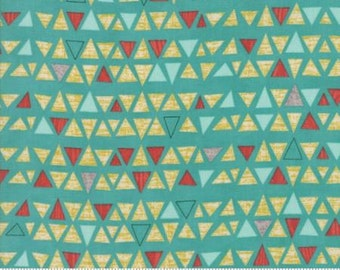 Ninja Cookies Fabric - Triangles