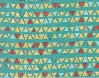 Pre-Order Ninja Cookies Fabric - Triangles
