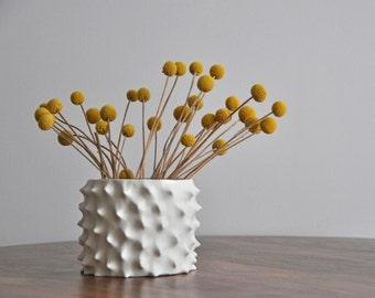 Spiked Modern Vase Planter Pot - Modern Planter ceramic flower pot Porcelain Ceramic Flower Vase