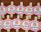 Pumpkin Photo Clips. Pumpkin. Fall Birthday. First Birthday. Set of 13. Newborn-12 Months. Month Clips. Pink. Orange