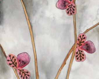 Pinks on Gray // archival print