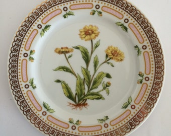 Georges Briard Floral Potpourri Dessert Plate Corn Marigold Botanical Mid Century Fine China