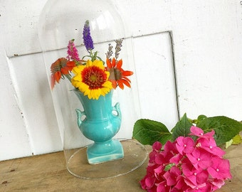 On Display... Vintage Display Dome Glass Cloche