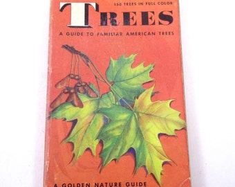 A Golden Nature Guide to Familiar American Trees Vintage Guide Book with Fabulous Illustrations