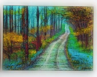 Spring green, Bluebonnet trail, 2.50x3.50 inches, mixed media photograph, rustic decor, #EtsyGifts, dirt roads, mixed media original