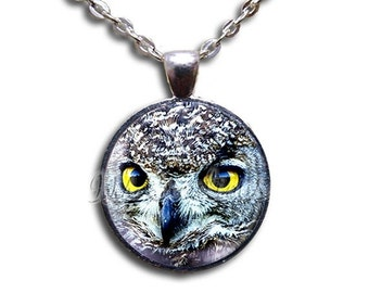 20% OFF - Owl Watching Glass Dome Pendant or with Chain Link Necklace AN110