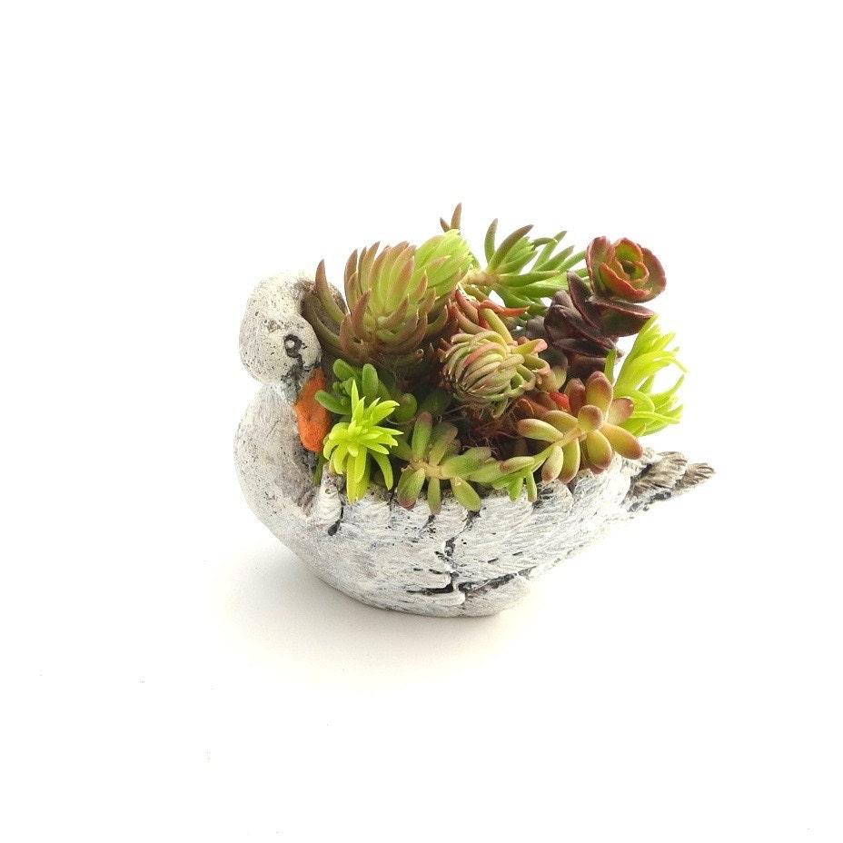 Miniature Garden Swan Planter With Sedum Cuttings Hand