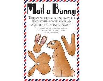 "Bunny Postcard, Set of 8 ""Mail a Bunny"" Postcards"