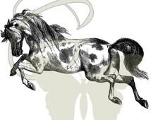 Horse Mustang Digital Printable Illustration Clip Art Image Download Animal 200