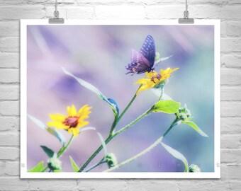 Sunflower Art, Butterfly Photograph, Nature Photography, Butterfly Print, Blue Art, Violet Art, Spring Flowers, Serene Art, MurrayBolesta