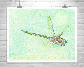 Dragonfly Art, Digital Art, Dragonfly Picture, Insect Photography, Insect Print, Bug Art, Green Art, Murray Bolesta, In Flight