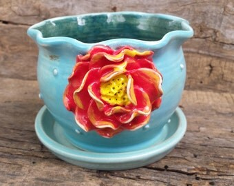 Turquoise flower pot with red rose