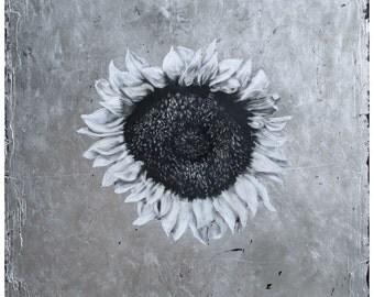 Following the Sun - metallic print