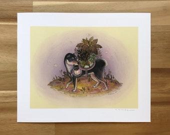 Black and Tan Shiba Inu - Fine Art Print by Nicole Gustafsson