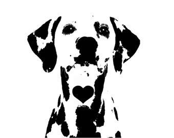 Black and White, Dalmatian T-shirt, Dalmatians, Dalmation, Dalmations,  Puppy, Puppies, Specialty Club