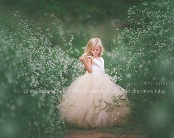 The Juliet Dress in Ivory/Champagne with Rhinestone Sash - Flower Girl Tutu Dress