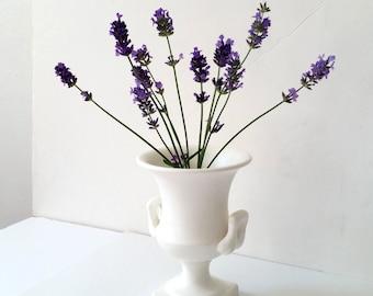 Lovely Ivory Vintage Vase . White Urn . Enesco Japan . White Handled Vase