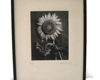 1994 Framed Black & White Fine Art Photograph Sunflower Doug Van de Zande