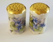 Antique Hand Painted Salt and Pepper shakers by Rosenthal China in Bavaria.